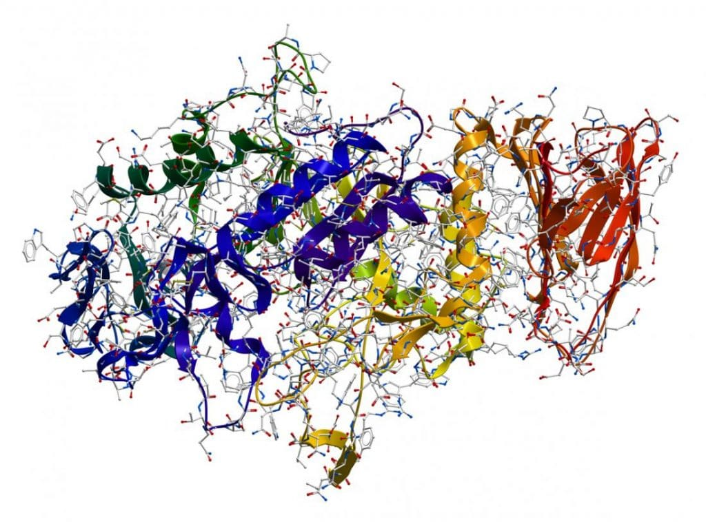 enzyme-la-gi